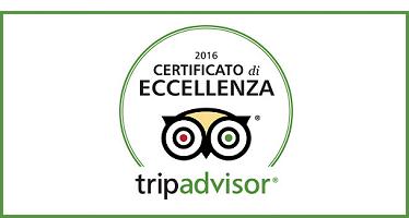 tripadvisor2016